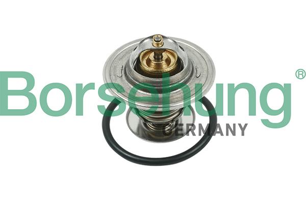 Termostat chladenia Borsehung GmbH